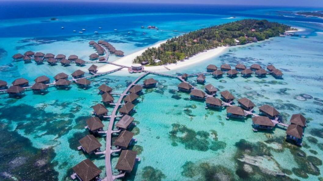 Maldiverna bröllopsresa