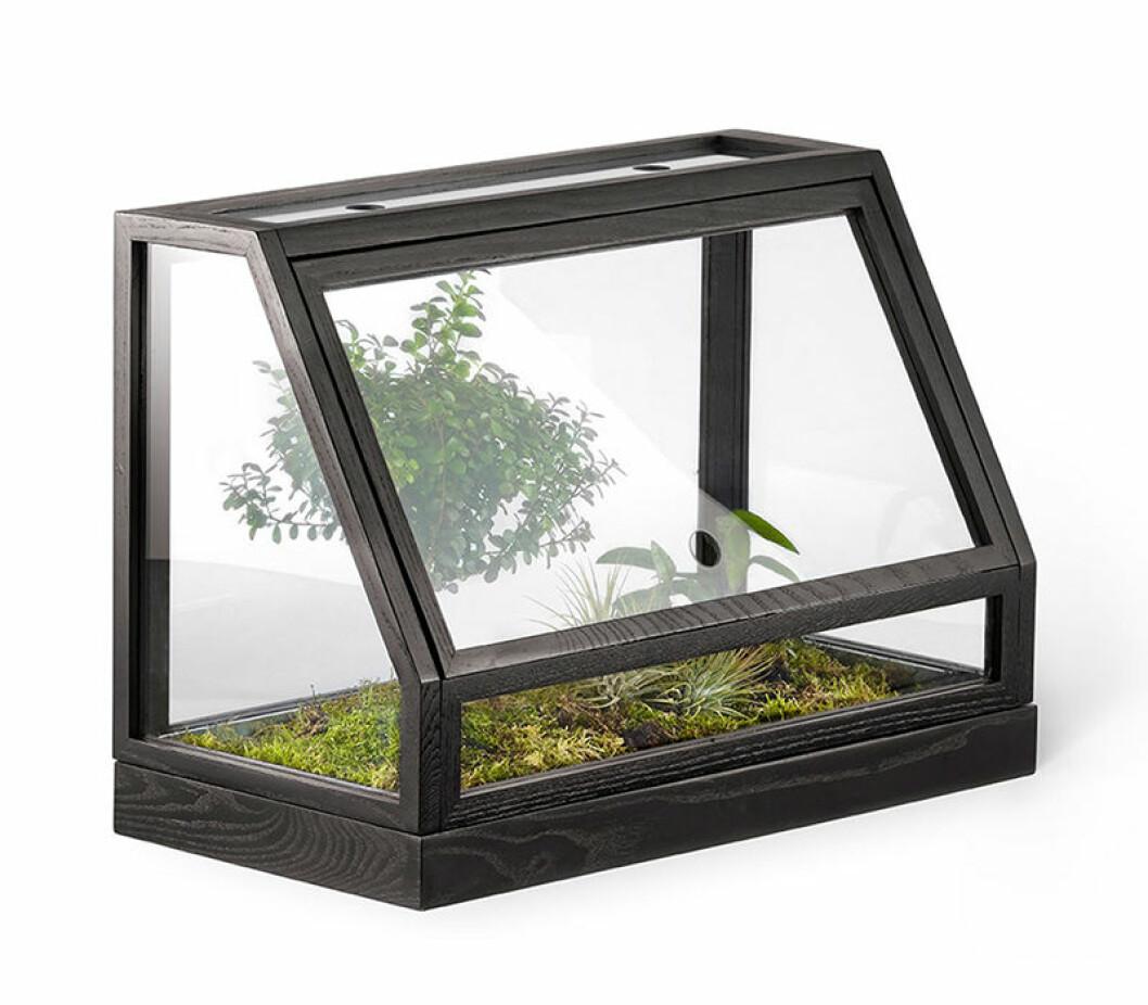 litet växthus från design house stockholm