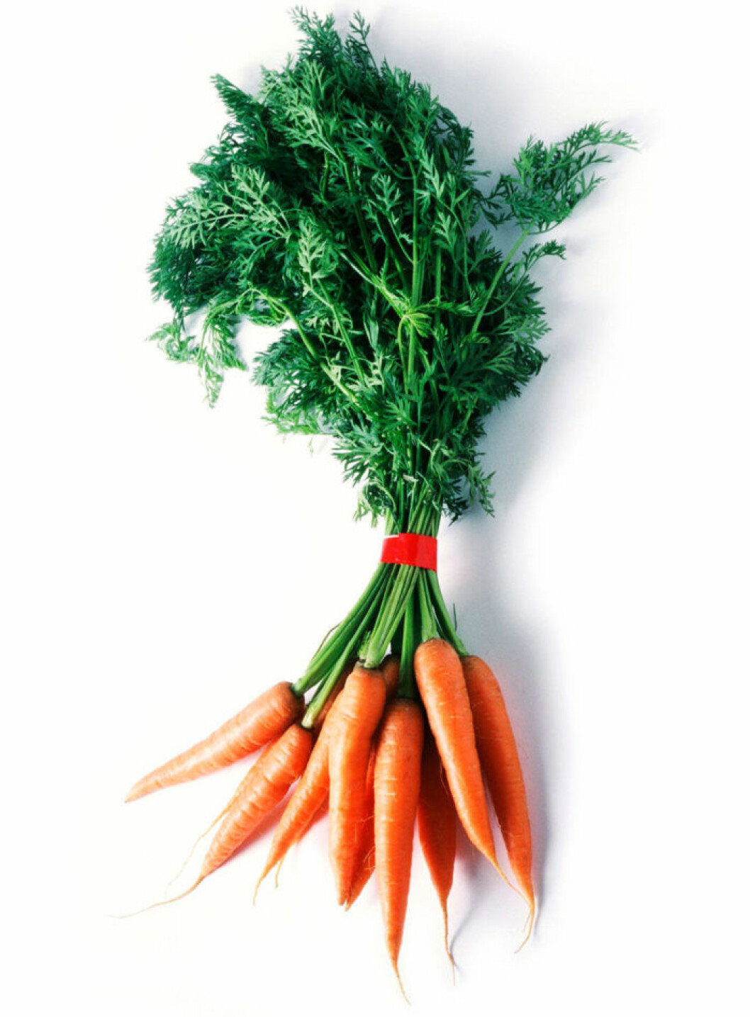 Morot. Moroten är rik på energigivande socker och vitaminerna B, C, D och E och är ett bra tillskott vid kraftlöshet och vitaminbrist. Den är också full av det gulröda färgämnet karoten, som i kroppen omvandlas till A-vitamin – ett viktigt vitamin som förebygger grå starr och ger bättre syn. Bäst är att äta den rå och oskalad så behåller den alla nyttigheter.