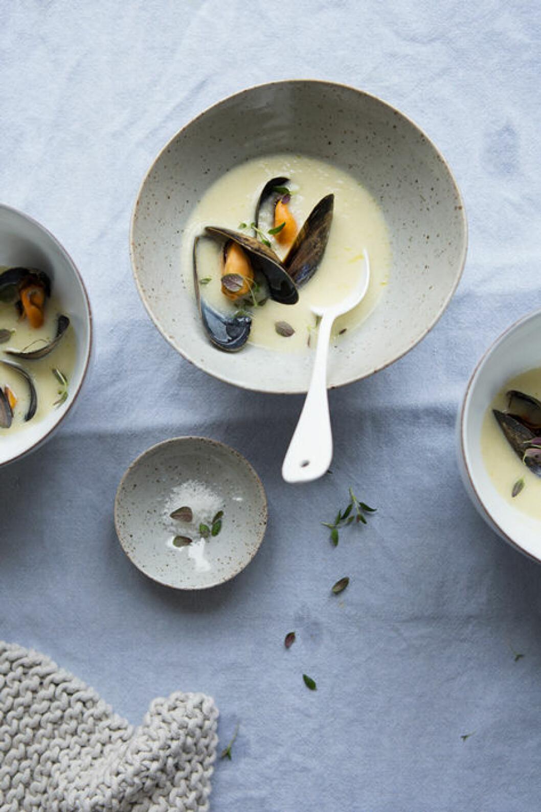 Jordärtskockssoppa med musslor
