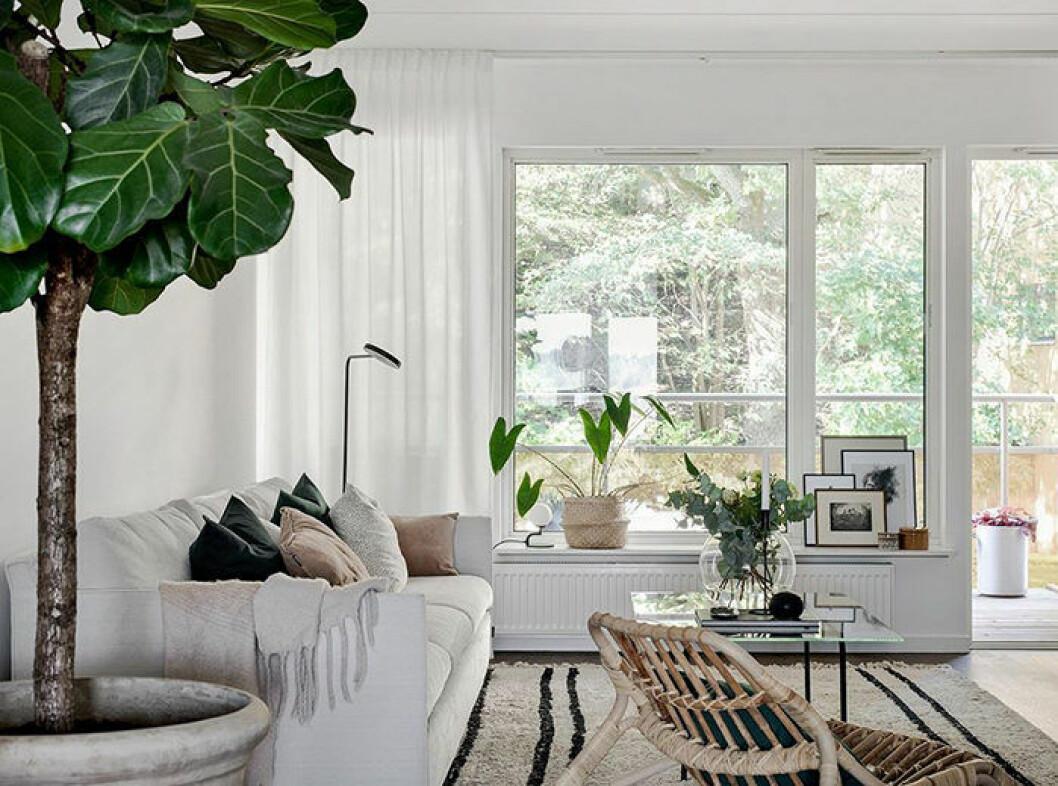Naturmaterial i vardagsrummet