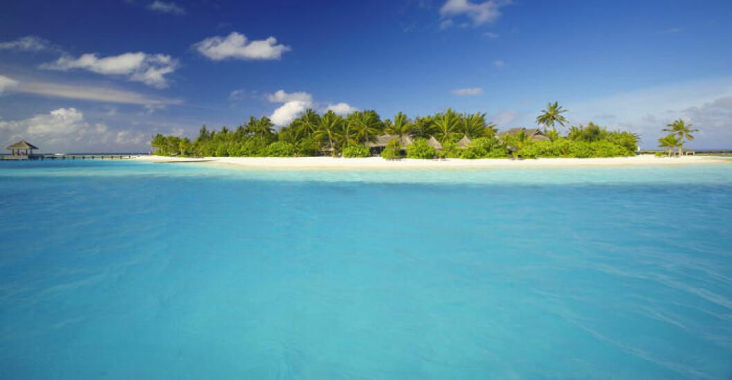 Exklusiva och avskilda Naladhu Island på Maldiverna