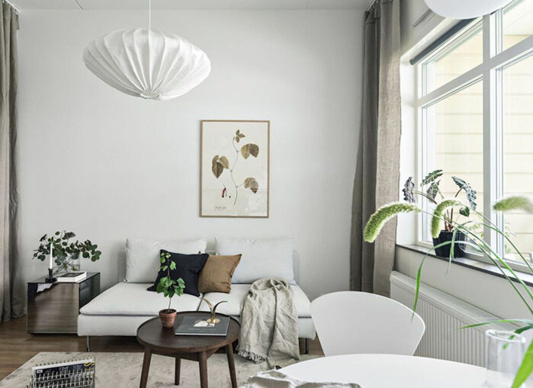 Inred med växter i den nyproducerade lägenheten för att skapa mysfaktor