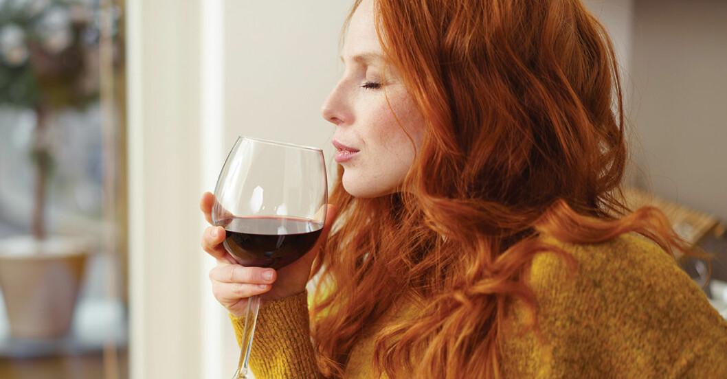vin bra för tarmen