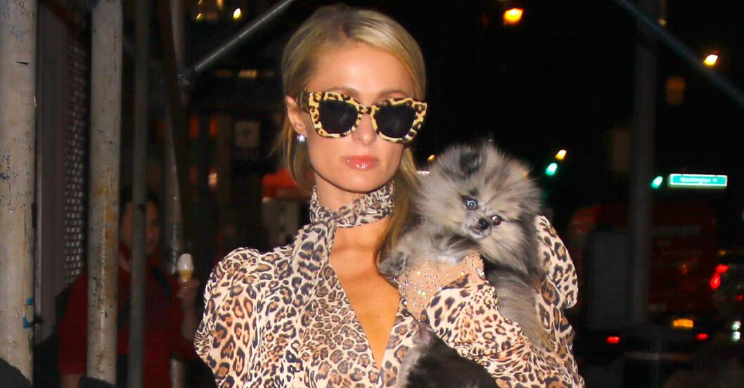Paris Hiltons plötsliga namnbyte – därför tar hon fästmannens namn