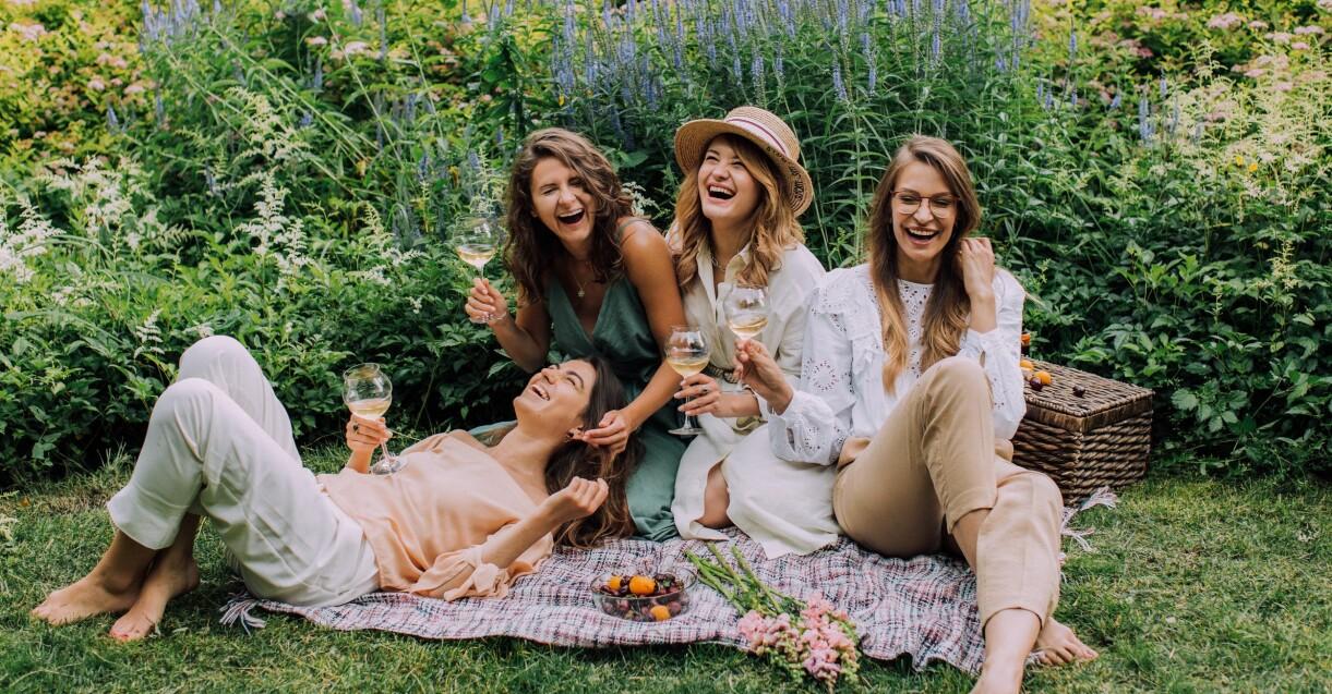 picnic med vänner