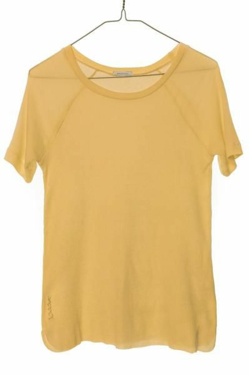 gul-tshirt-ragdoll