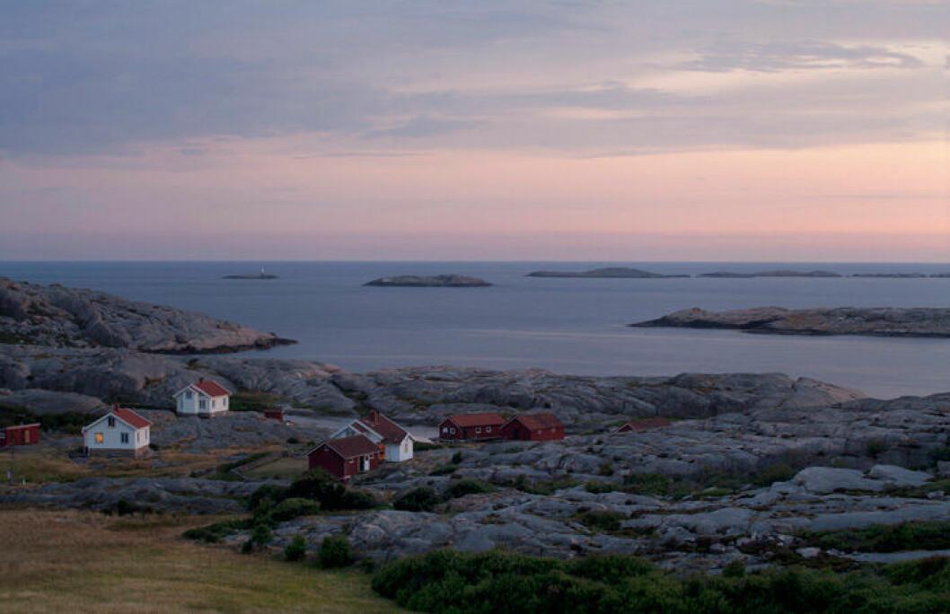 En bild på naturreservatet Ramvikslandet vid Bohusläns kust.