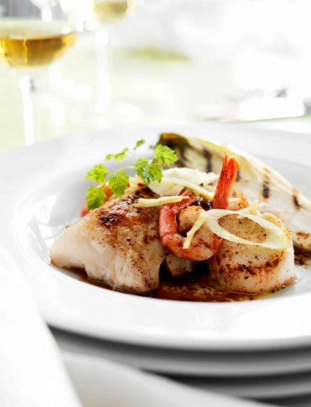 fisk- och skaldjurstallrik tillsammans med grillad endiv och brynt sojasmör.