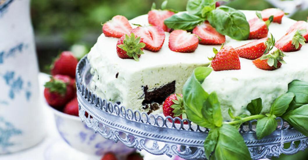 basilikatårta med jordgubbar