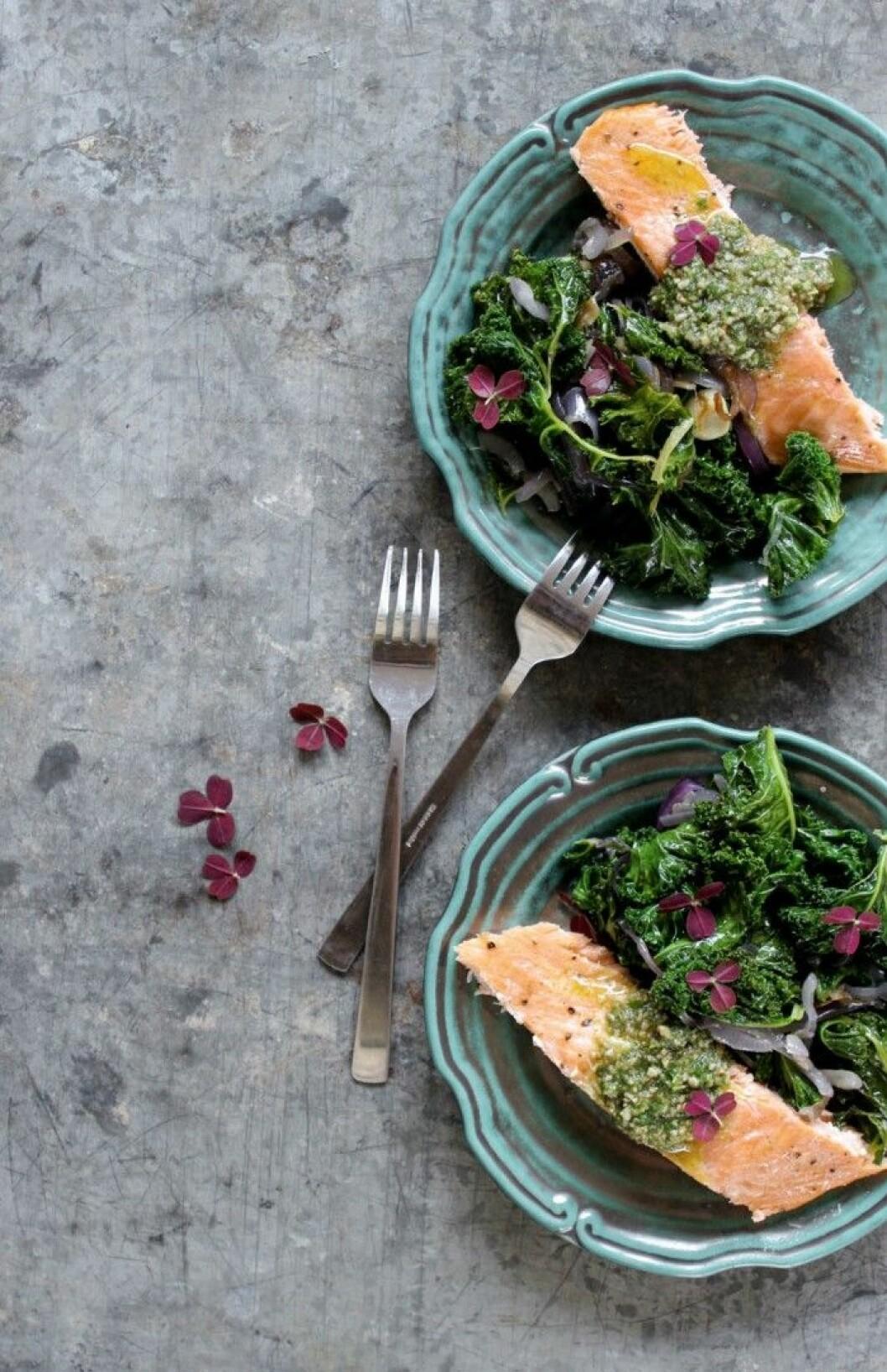 Veckans middagstips! Grönkål med ugnsbakad lax och solrospesto på gröna tallrikar