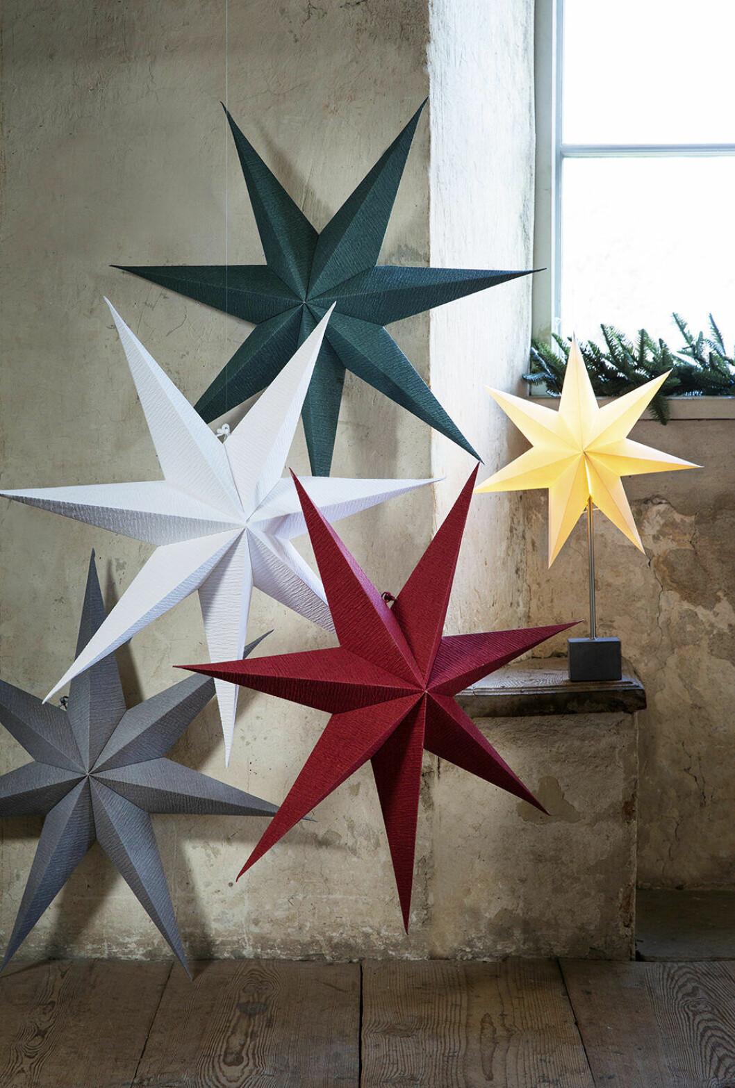 Adventsstjärnor från Rusta