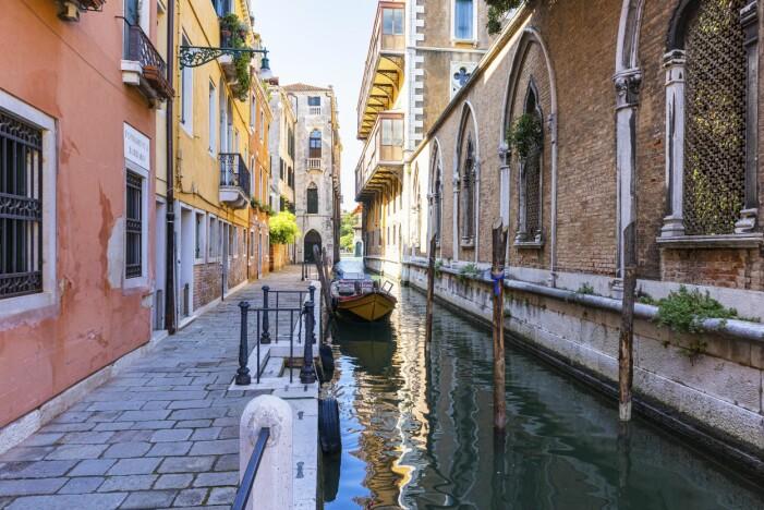 Inga delfiner i Venedig men väl stilla kanaler under corona