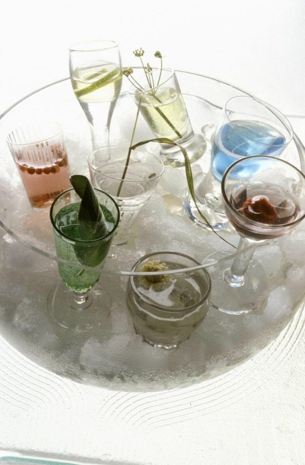 Cocktails på kylning