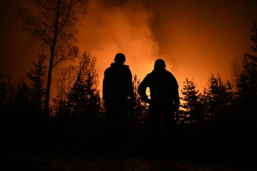 Brandmän vid skogsbrand