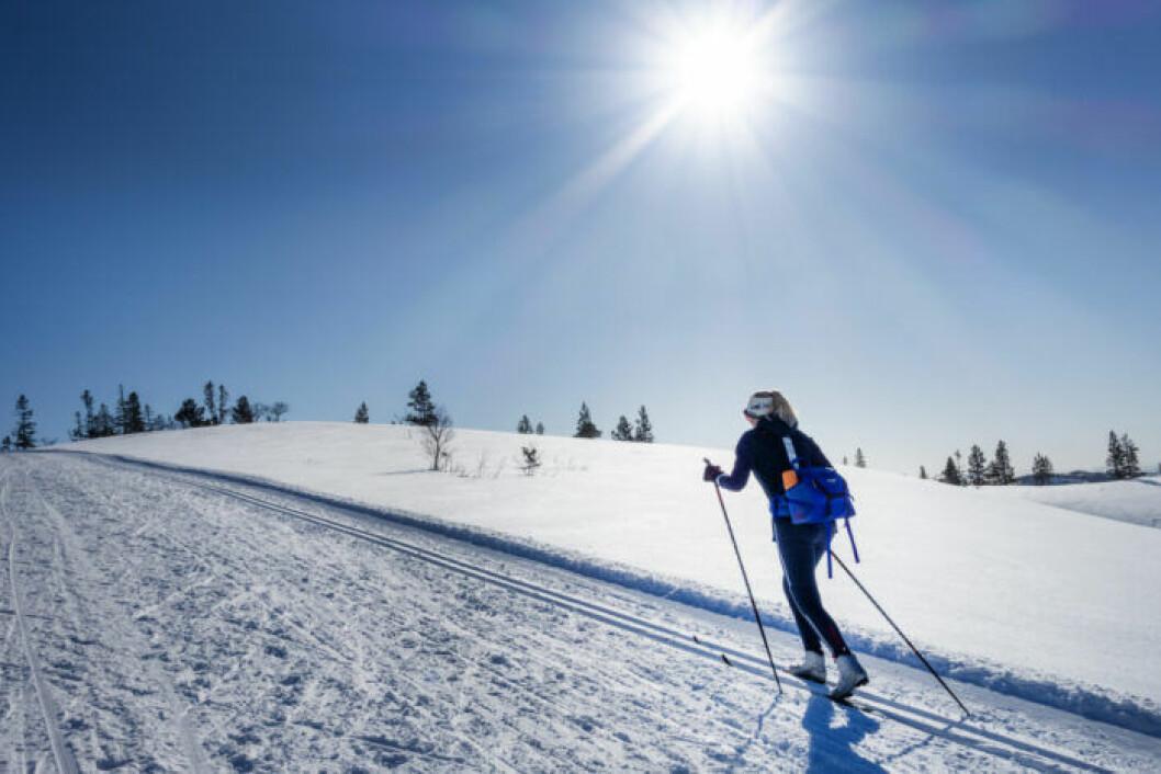 Person åker längdskidor