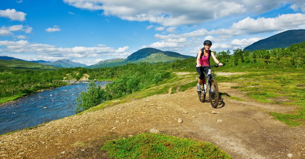 Cykling i Jämtlandsfjällen