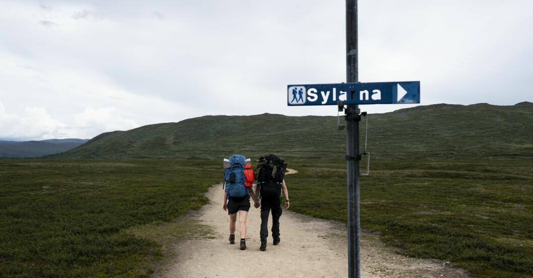 Vandring i Jämtlandstriangeln, mellan Storulvån och Blåhammaren.