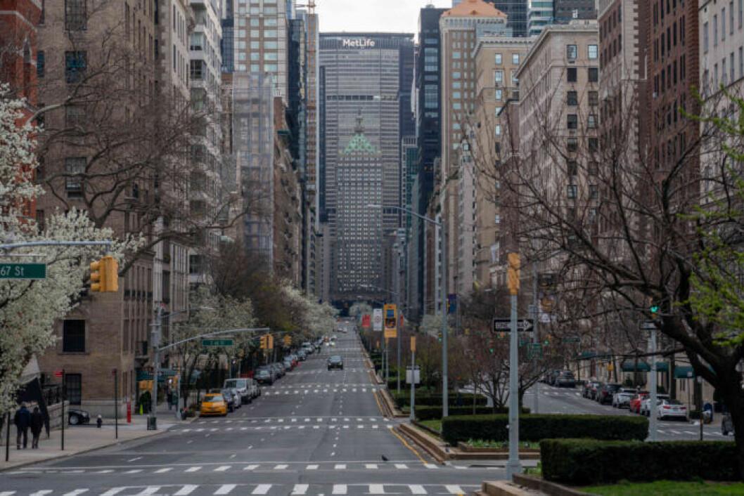Gata tom på bilar i New York.