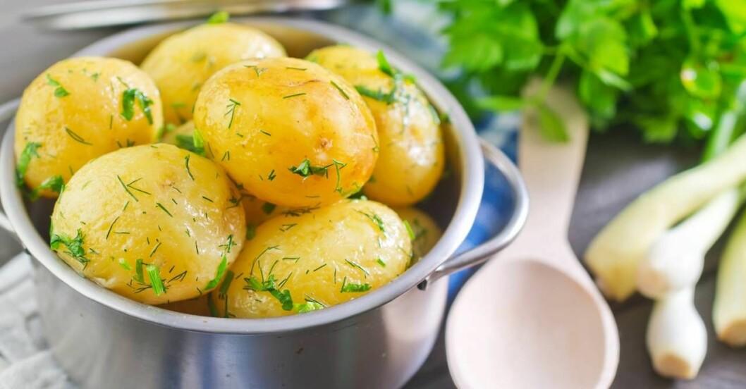så många potatisar ska du koka per person