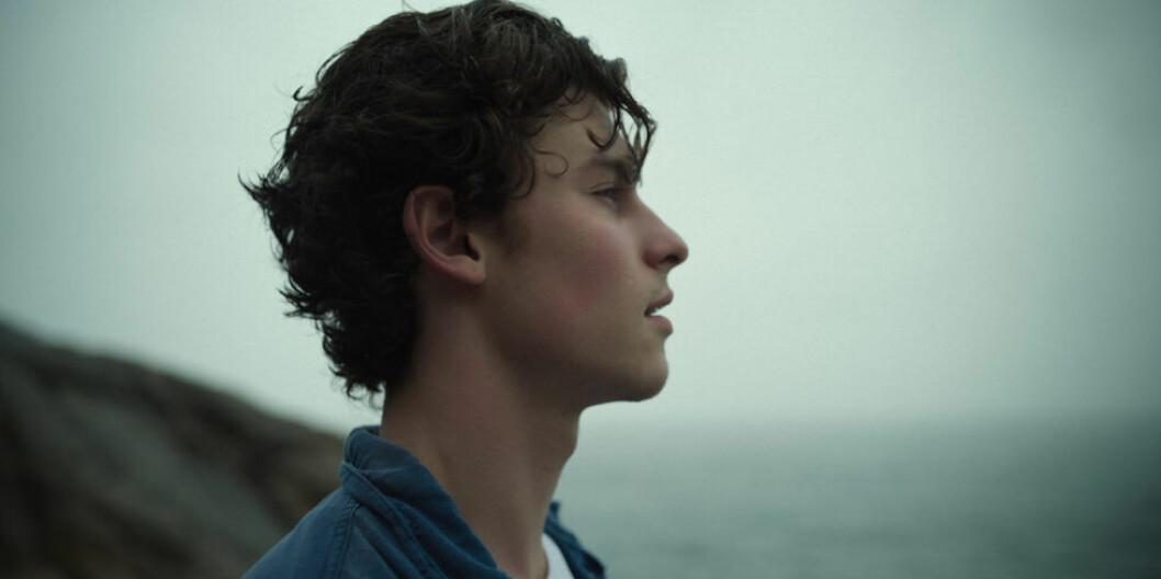 Bild på Shawn Mendes: In Wonder