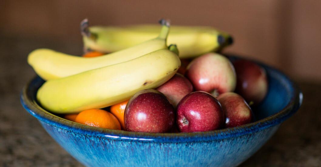 skal-med-frukt