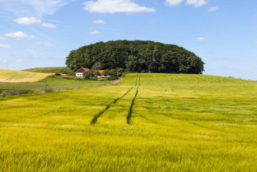Drömmer du om en Skånelänga som sommarställe?
