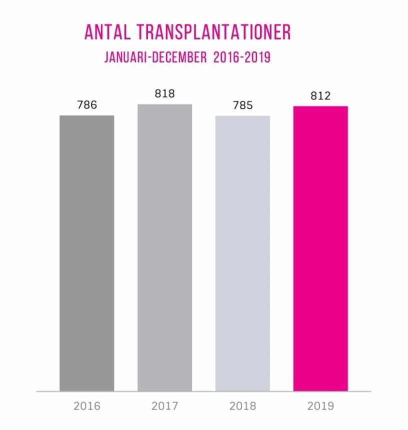 Statistik över transplantationer åren 2016-2019