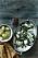 Torsk med svartkål och dillsås