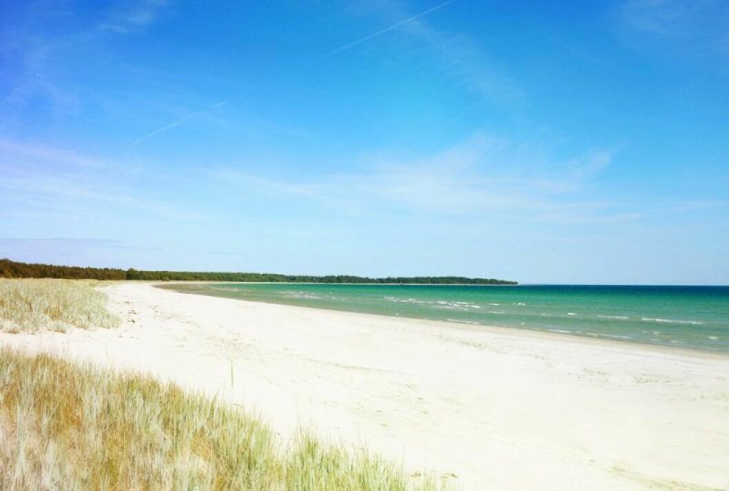 Stranden Sudersand på Fårö.
