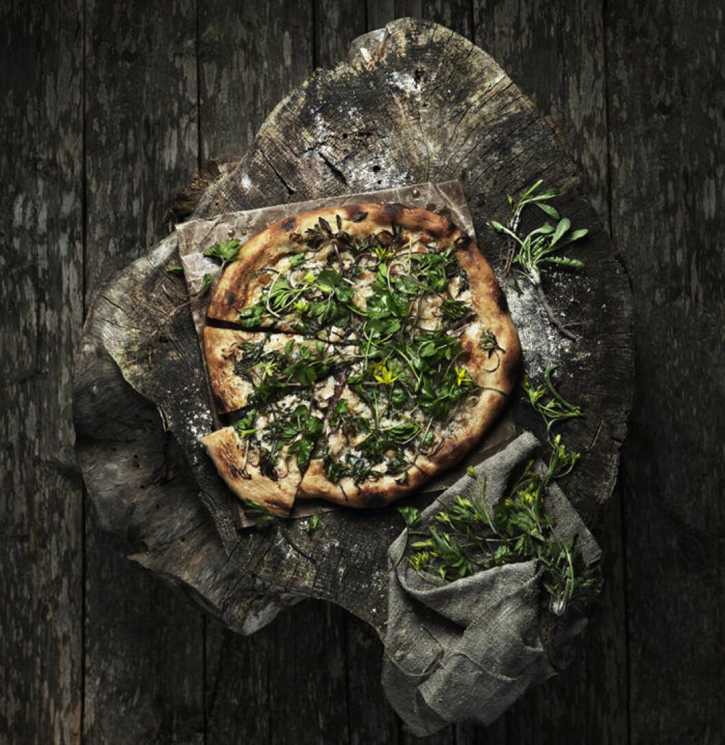 Svamppizza med örter.