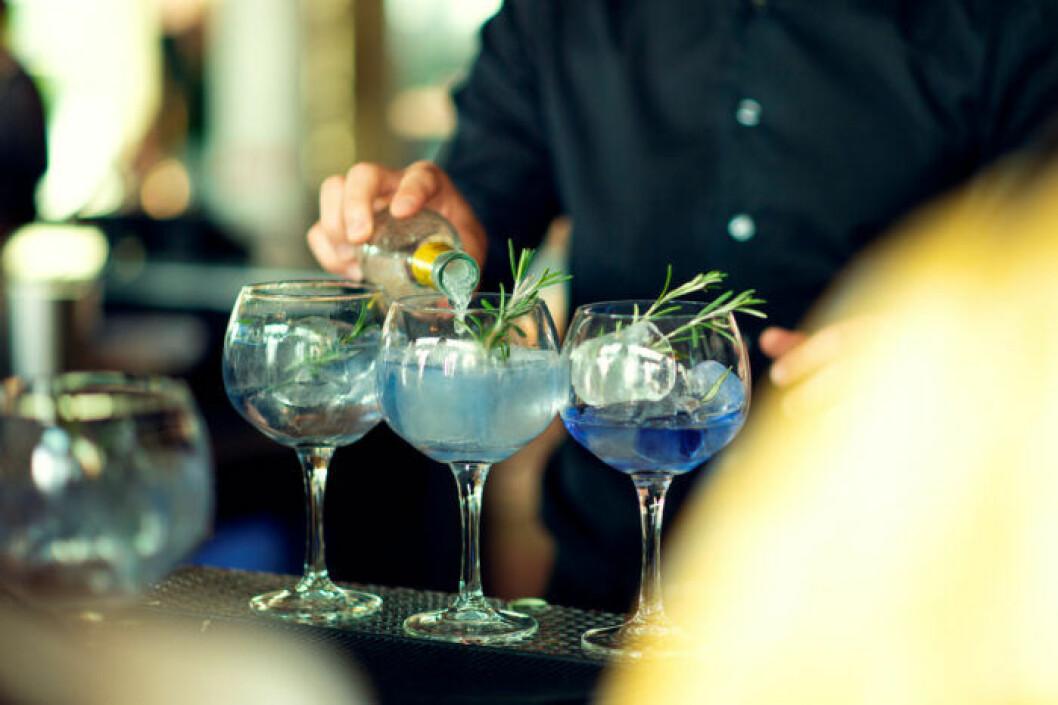 Tips på hur du blandar din bästa Gin & tonic.
