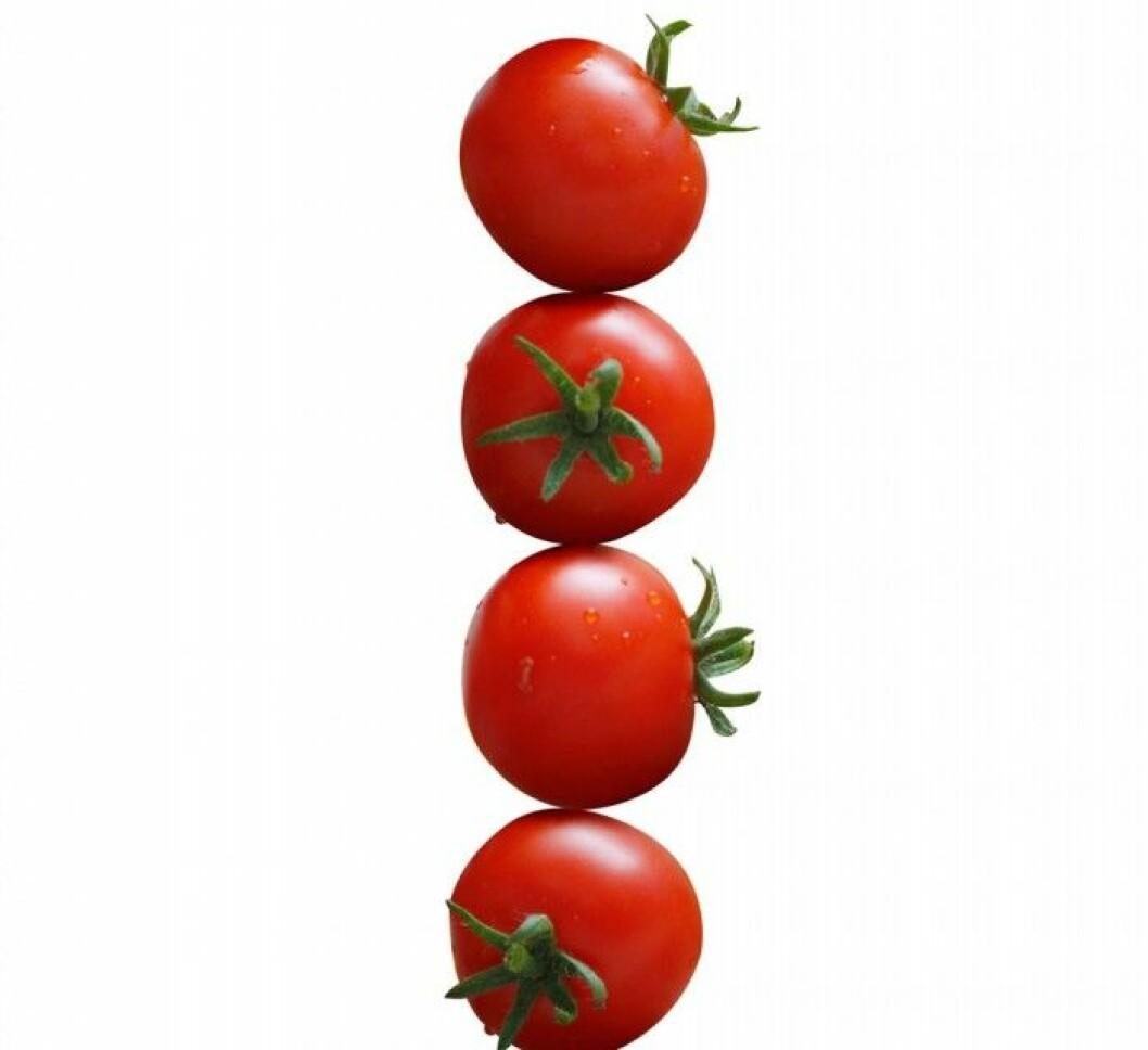 Tomat. Tomater innehåller det röda färgämnet lycopen, som är 100 gånger mer effektivt som antioxidant än vitamin E. Det hjälper till att skydda huden mot för tidigt åldrande, som orsakats av till exempel för mycket solande. Lycopen stärker också syn och minne.