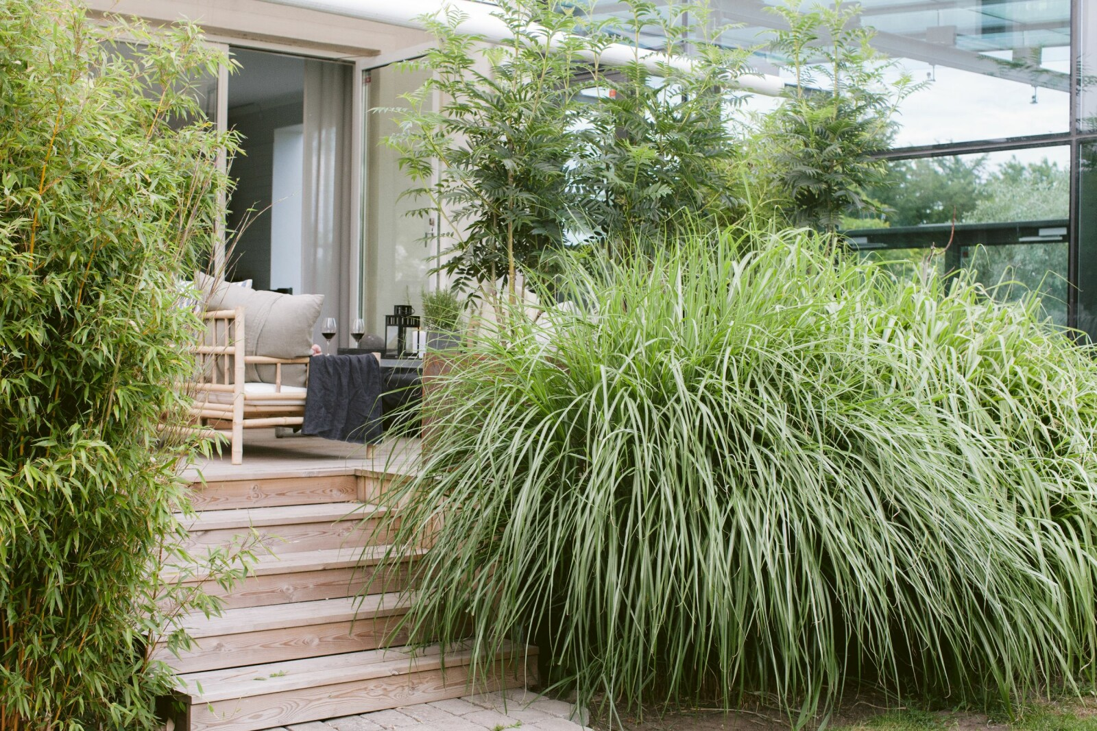 Trädgården i Lomma uteplats gräs trappa