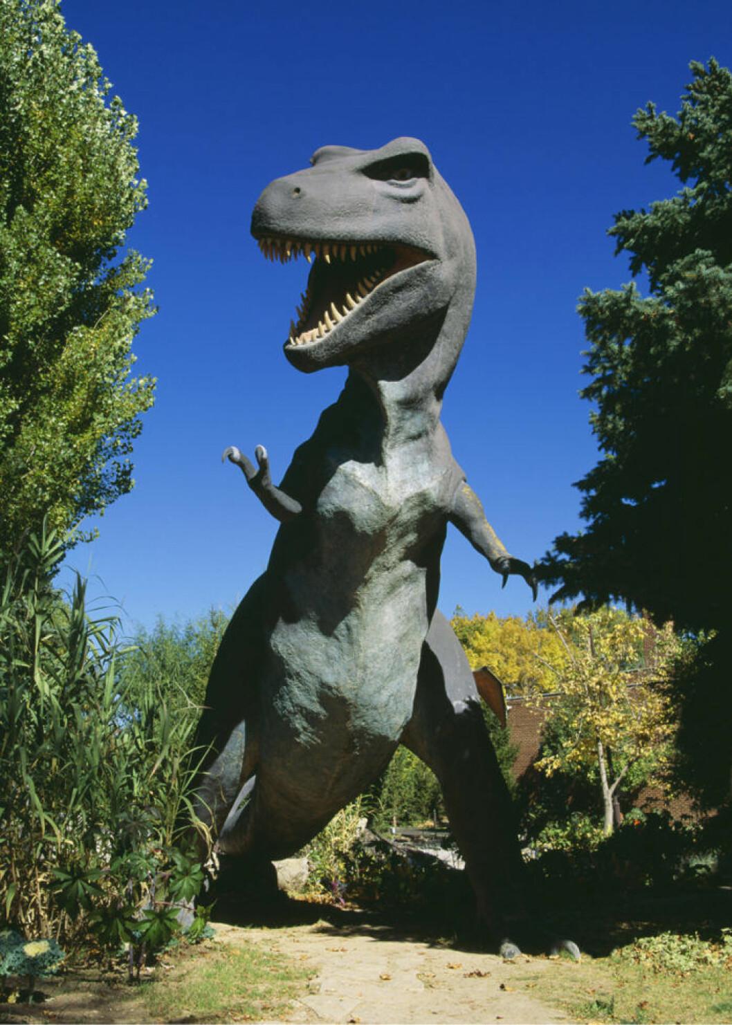 T-Rex. Nya namnlagen