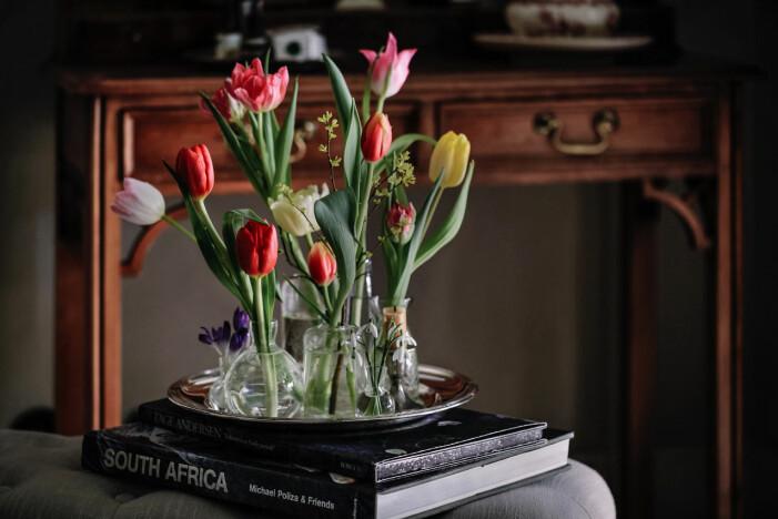 tulpaner i små vaser