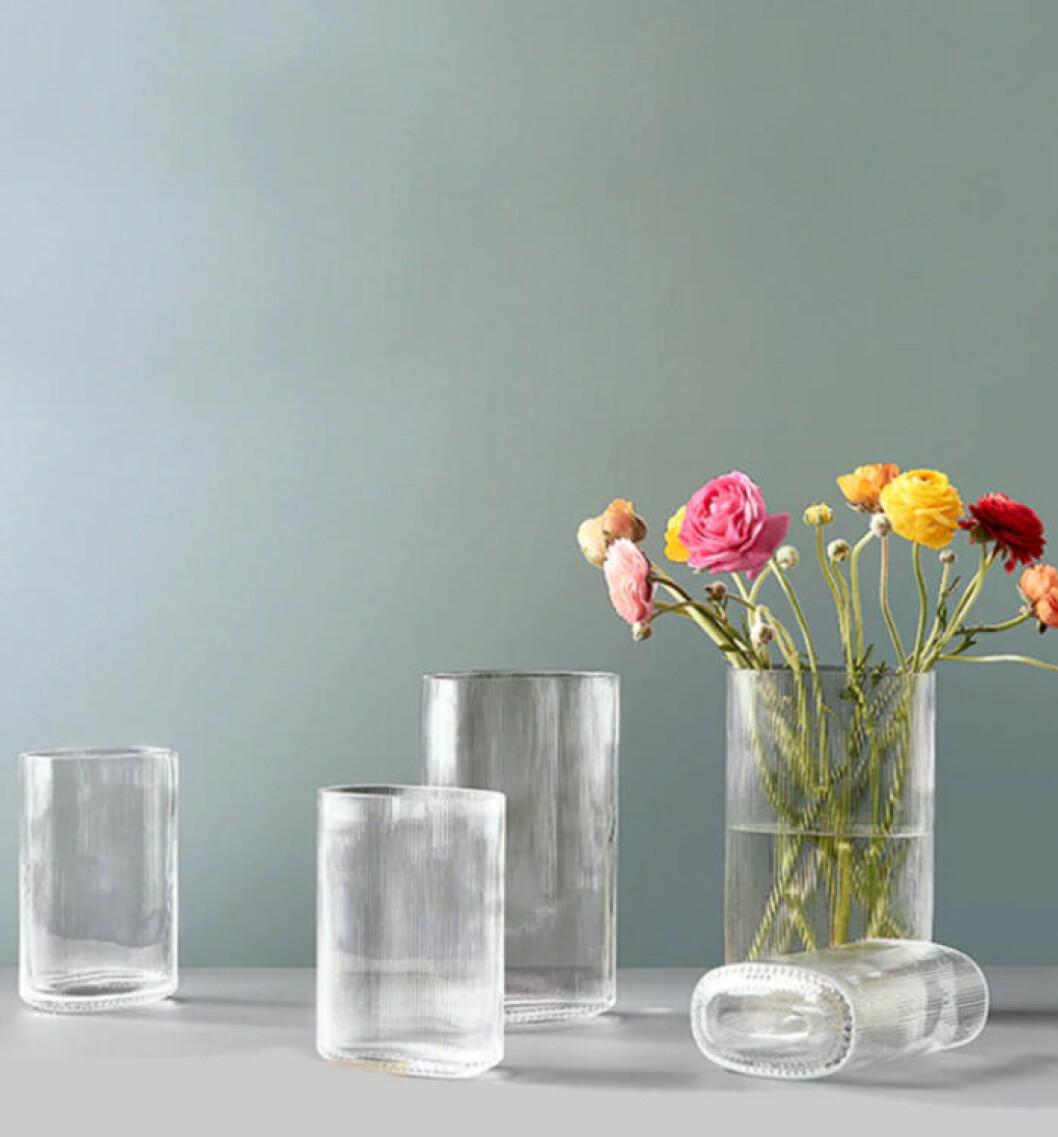 Vacker tulpan i glas