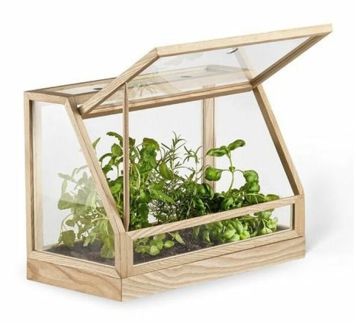Växthus mini Designtorget