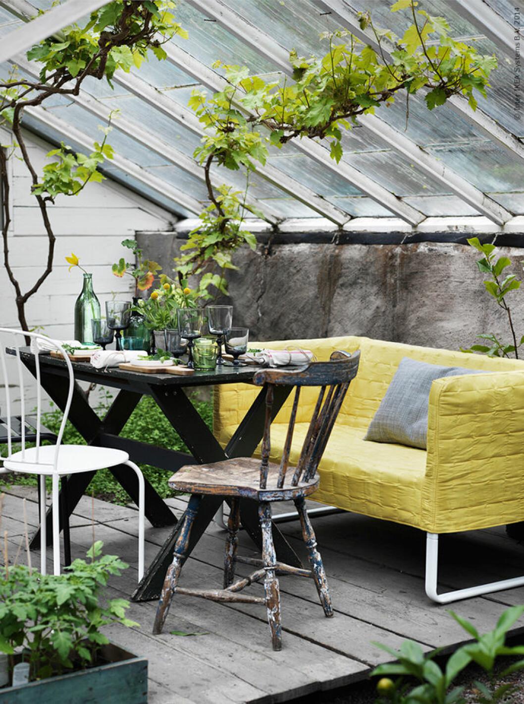 Skapa en sällskapsyta i växthuset och orangeriet.