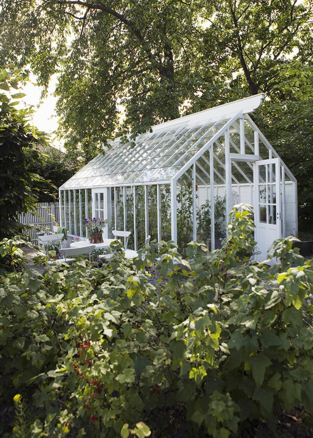 Glöm inte utsidan av växthuset – dekorera och inred trädgården