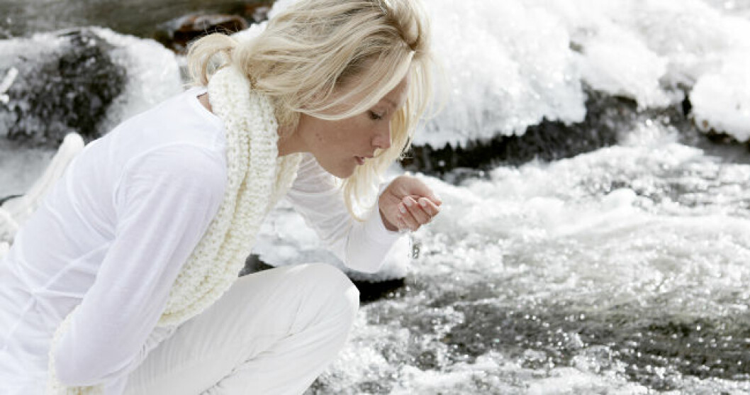 vinterhy