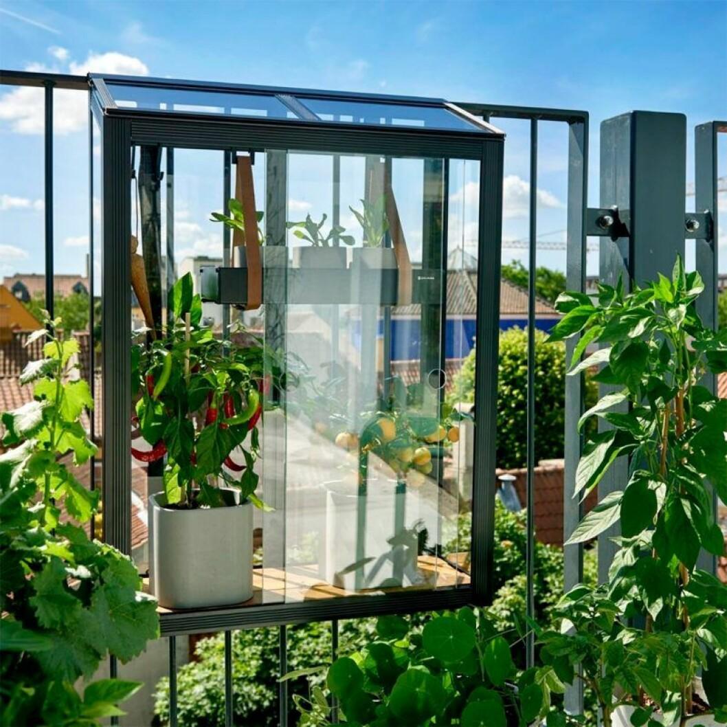 Snyggt odlingsskåp för balkong