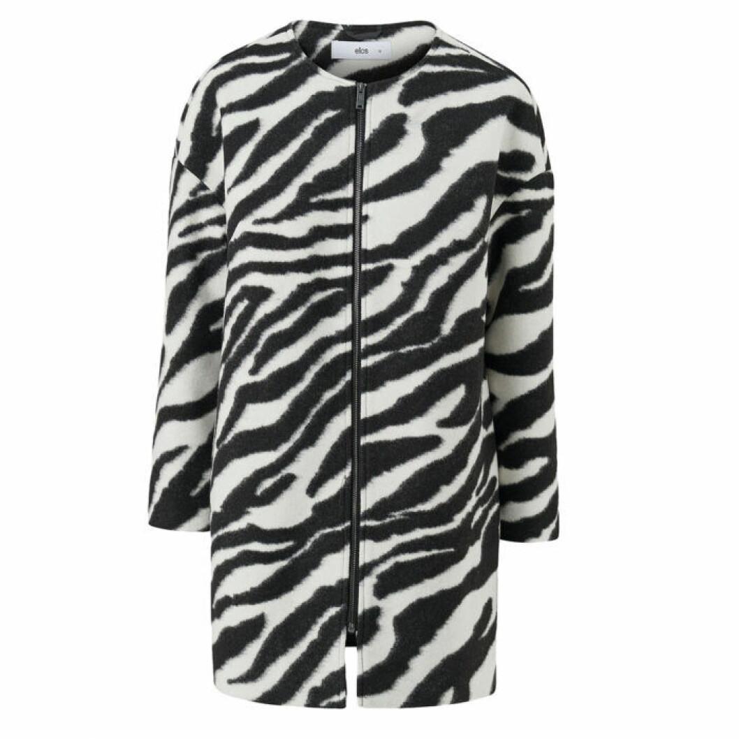 Zebramönstrad kappa